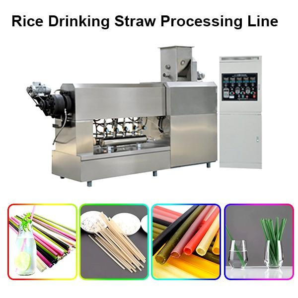 Production Line Spaghetti Industrial Pasta Making Machine Pasta Straw Making Machine Degradable Straw Processing Line #1 image