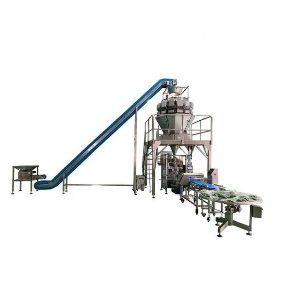 Factory Fruit and Vegetable Processing Machines/Quick Frozen Line/Food Processing Production Line for Daylily Production Line with High Output #1 image
